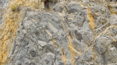 Rocks Protected From Falling - stock footage