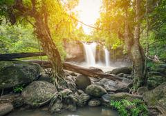 Powerful waterfall surrounded by trees and rocks Stock Photos