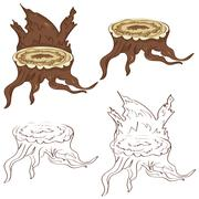 Tree Stump with Roots Stock Illustration