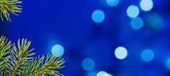 Blue Christmas Background with Christmas Twig and Unfocused Lights Stock Photos