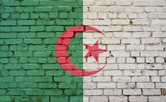 Flag of Algeria painted on brick wall, background texture - stock photo