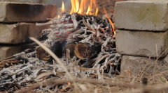 Flaming bonfire with kindling in the evening - stock footage