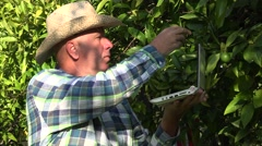 Farmer use modern technology laptop database managing oranges fruits business. - stock footage