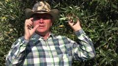 Olive tree plantation owner talk in interview about vegan diet using olives. Stock Footage