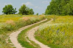 Rural road through grass meadow Stock Photos