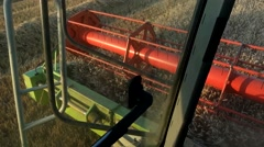 Combine harvester treshing wheat cutterbars view Stock Footage