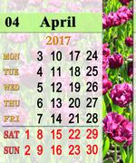 Calendar for April 2017 with lilac tulips Stock Illustration