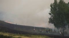 Forest Fire. Extinguishing the Flame. People Knock the Fire Tree Branches Stock Footage