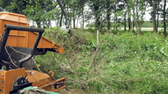 An excavator claw picking up the cut up branches - stock footage