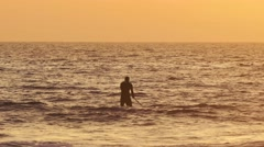 Stand up paddler silhouette at sunset Stock Footage