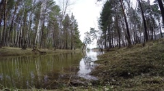 A small forest lake. The picturesque landscape. Siberia. Khakassia. Stock Footage