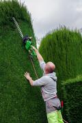 Gardener mows bushes Stock Photos
