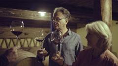 Senior couple at a wine tasting Stock Footage