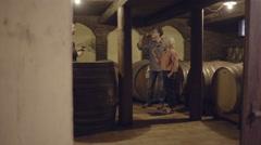 Senior couple at a wine tasting - stock footage