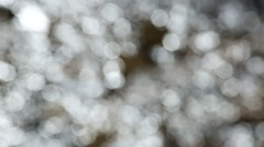 Nature background of grey, brown and silver colors. Stock Footage