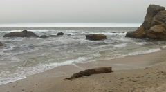 Wooden timber on sandy beach with choppy rough sea, dense gray clouds sky. - stock footage