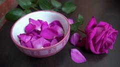 Petals fall around single rose - stock footage