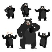 Baribal American black bear set. Grizzly various poses. Expression of emotion - stock illustration