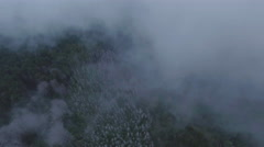4K Aerial View: Fog & Clouds panning over tops of trees/magical/Creepy Stock Footage