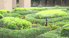 Garden Irrigation Sprinkler watering green bush - stock footage