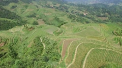 AERIAL FLY BY CHINESE FARMER IN SPRAYING PESTICIDES LONGJI RICE TERRACES CHINA Stock Footage