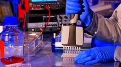 Sample preparation for DNA electrophoresis. Adding samples in Gel Electrophor Stock Footage
