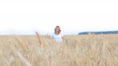 Woman walking and touching wheat spikes on wheat field Stock Footage