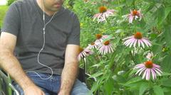 Man smelling flower in garden flowers summer Stock Footage