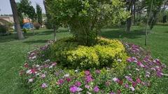 Chehel Sotoun flowers Stock Footage