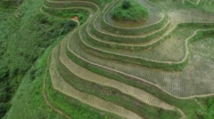 REVERSE AERIAL TILT OF RICE TERRACE FIELDS ON SIDE OF MOUNTAIN IN GUILIN CHINA Stock Footage