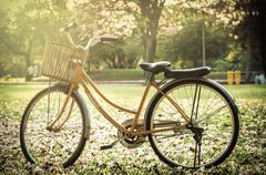Classic Bicycle at sunset in the park or deep forest - stock photo