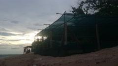 Turtle Hatchery in Los Cobanos Stock Footage