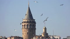 Flocks of sea gulls, anxiously flying around Galata Towerr in Istanbul, Turkey - stock footage
