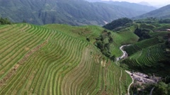AERIAL TILT DOWN FLY OVER OF STEEP LONGJI RICE TERRACES IN LONGSHENG CHINA Stock Footage