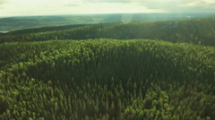 Aerial Shot of Mountains Covered with Pine Forest in Northern Europe - stock footage