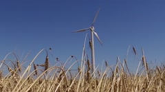 Eolic turbine wind renewable energy farm in wheat field steady shot Stock Footage