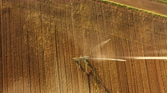 Aerial: Watering a lettuce field in summer Stock Footage