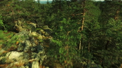 Aerial Shot of Mountains Covered with Pine Forest in Northern Europe Stock Footage