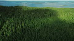 Aerial Shot of Mountains on the Coast, Covered with Pine Forest in Northern Euro Stock Footage