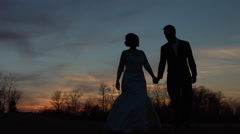 Bride and Groom Holding Hands and Kissing at Sunset 60FPS Stock Footage