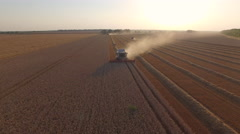 Harvester threshing wheat front view Stock Footage