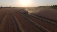 Harvester threshing wheat and become dusty Stock Footage