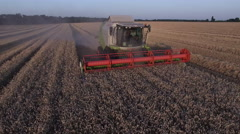 Combaine harvester threshing wheat Stock Footage