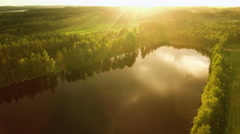Aerial Shot of Large Lake Surrounded by Pine Forest Stock Footage