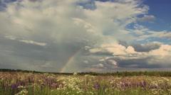 Rainbow in field Stock Footage