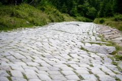 Bumpy cobblestone road. Shallow depth of field Stock Photos