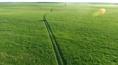 Aerial view of suv car moving on road in green fields Stock Footage