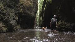 Exploring Oregon Man And His Dog Stock Footage