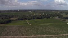 Vineyards aerial Stock Footage