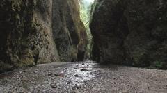 Oneonta Gorge Oregon Scenic Stock Footage
